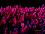 Публика / Audience