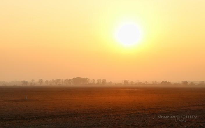 Червен следобед в полето