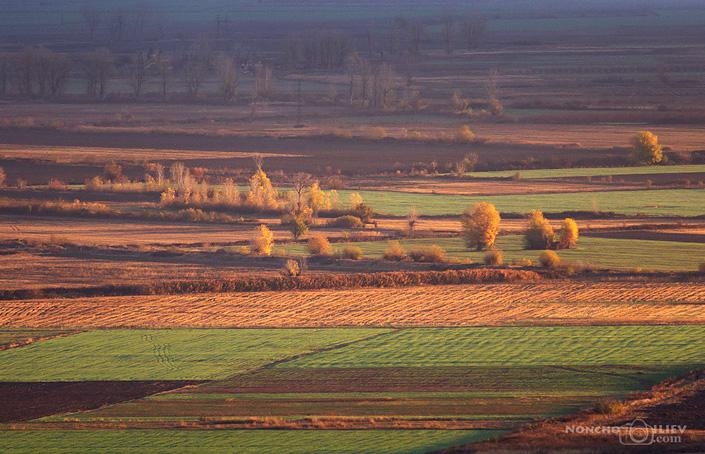 Есенно поле