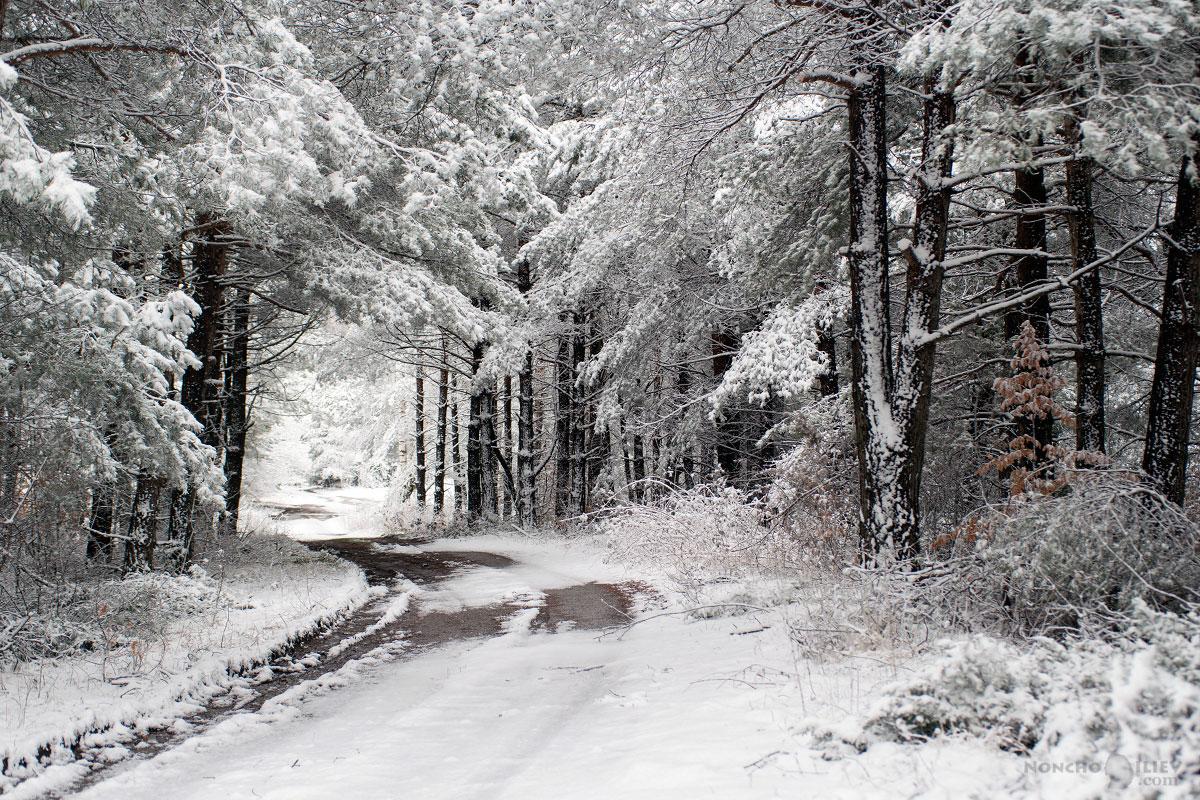 март зима сняг път