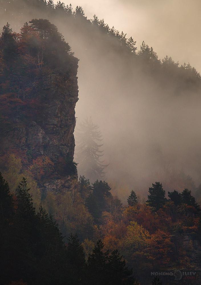 сутрин в мъгла
