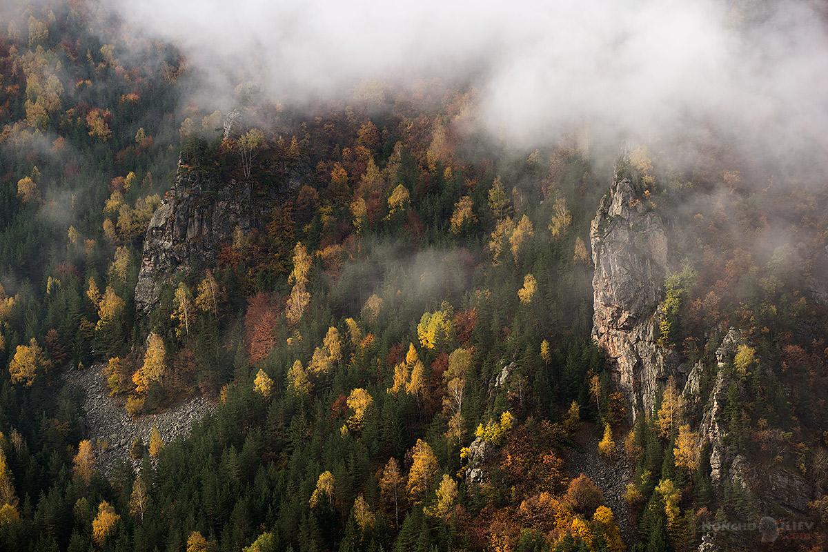 облаци и есенна гора