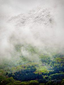 април сняг зелено Витоша